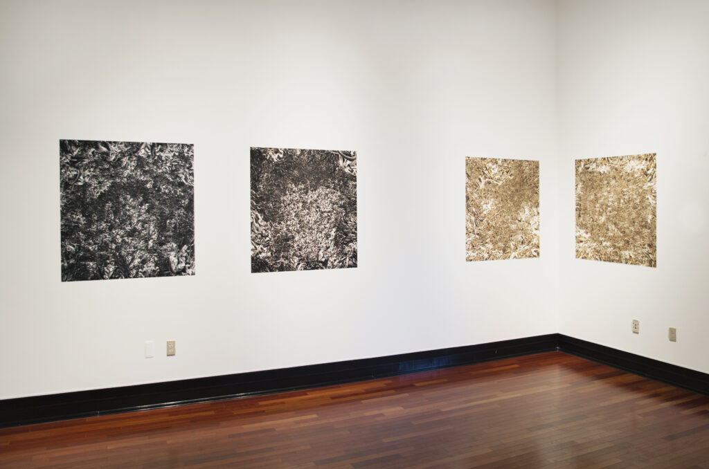 large digital photographs of metallic surfaces pinned to a gallery wall